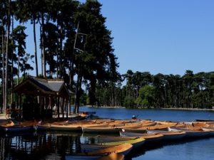 Lac inférieur Bois de Boulogne