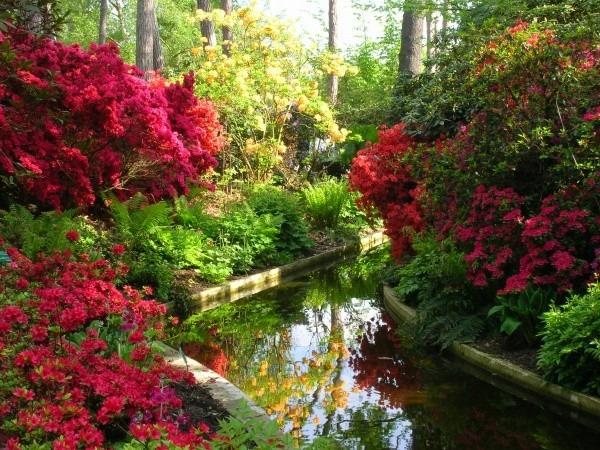 Loisirs pas cher à Paris, en Ile de France et ailleurs ~ Parc Floral Bois De Vincennes