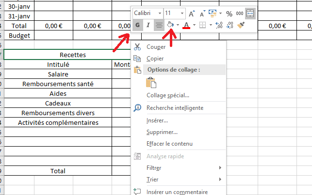 cellule excel en gras couleur