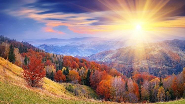 Lever de soleil forêt multicolore